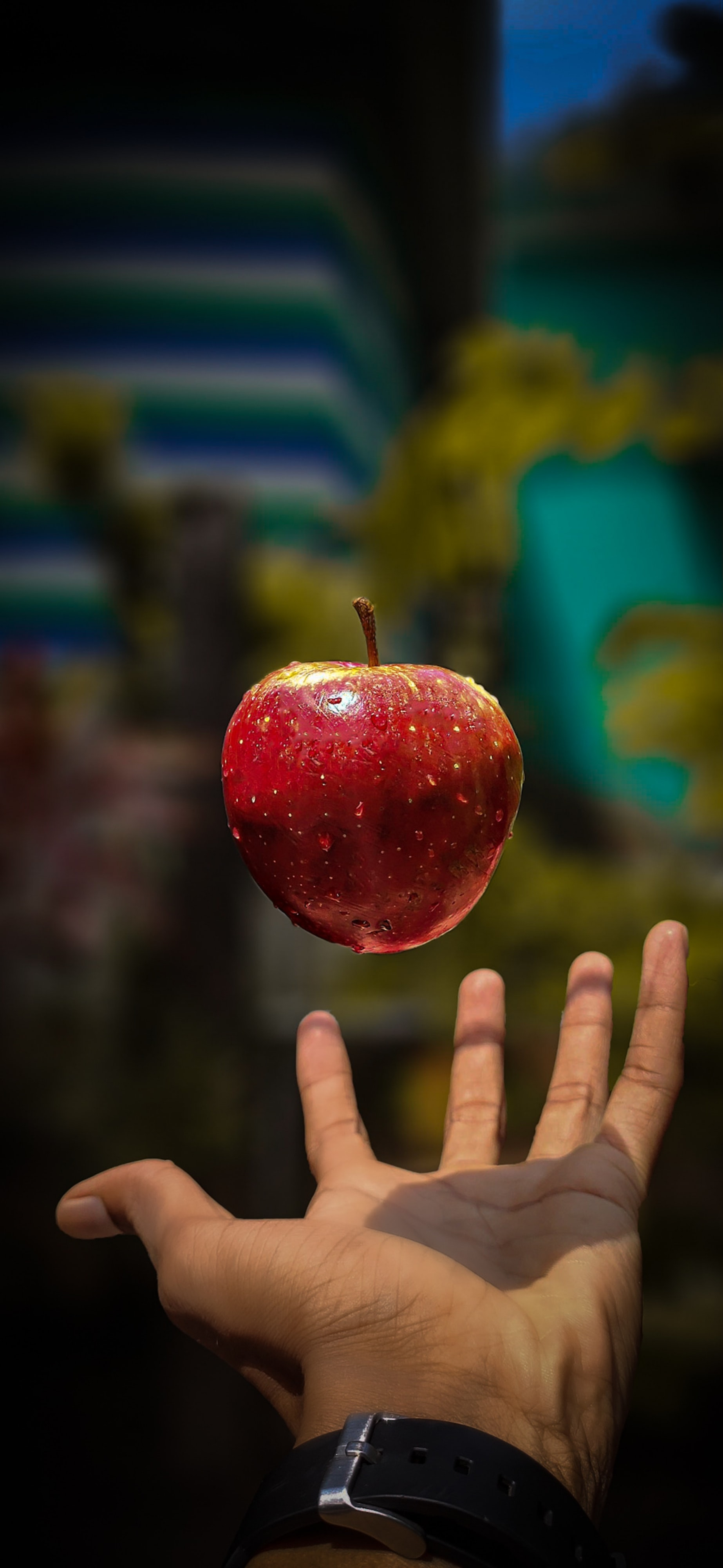 A White Witch's Guide to Apple Picking