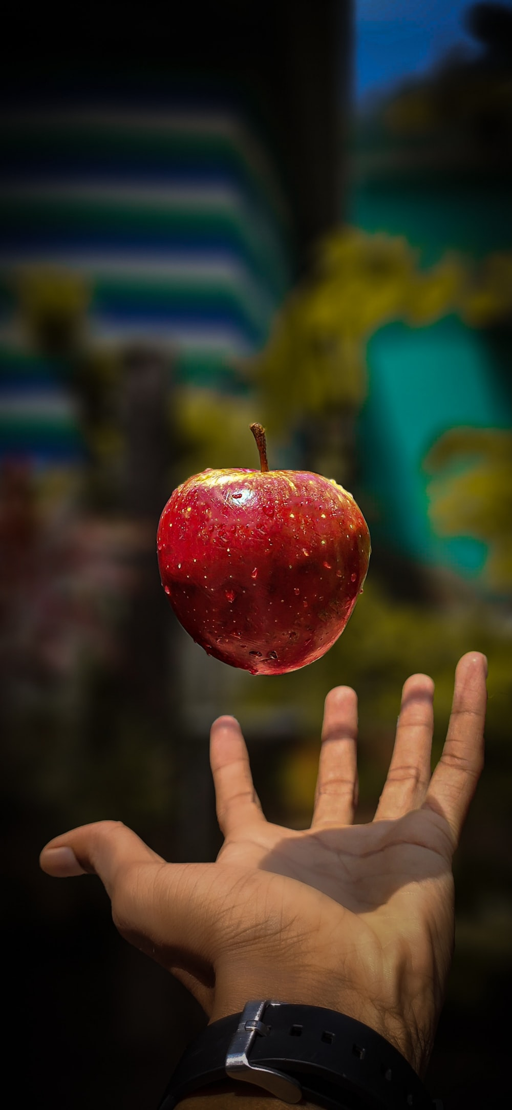 red apple near person's hand