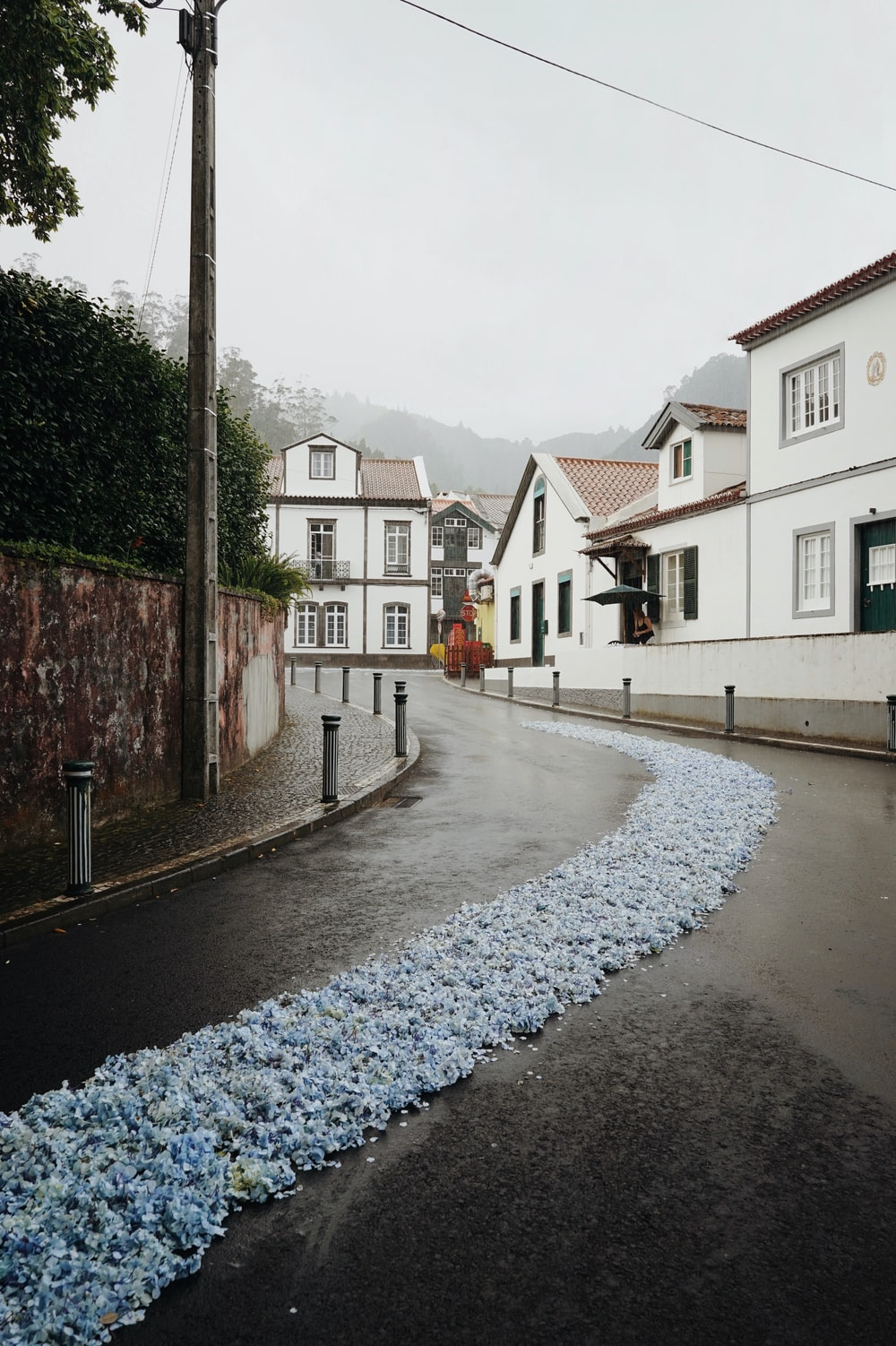 road with blue ornaments beside houses