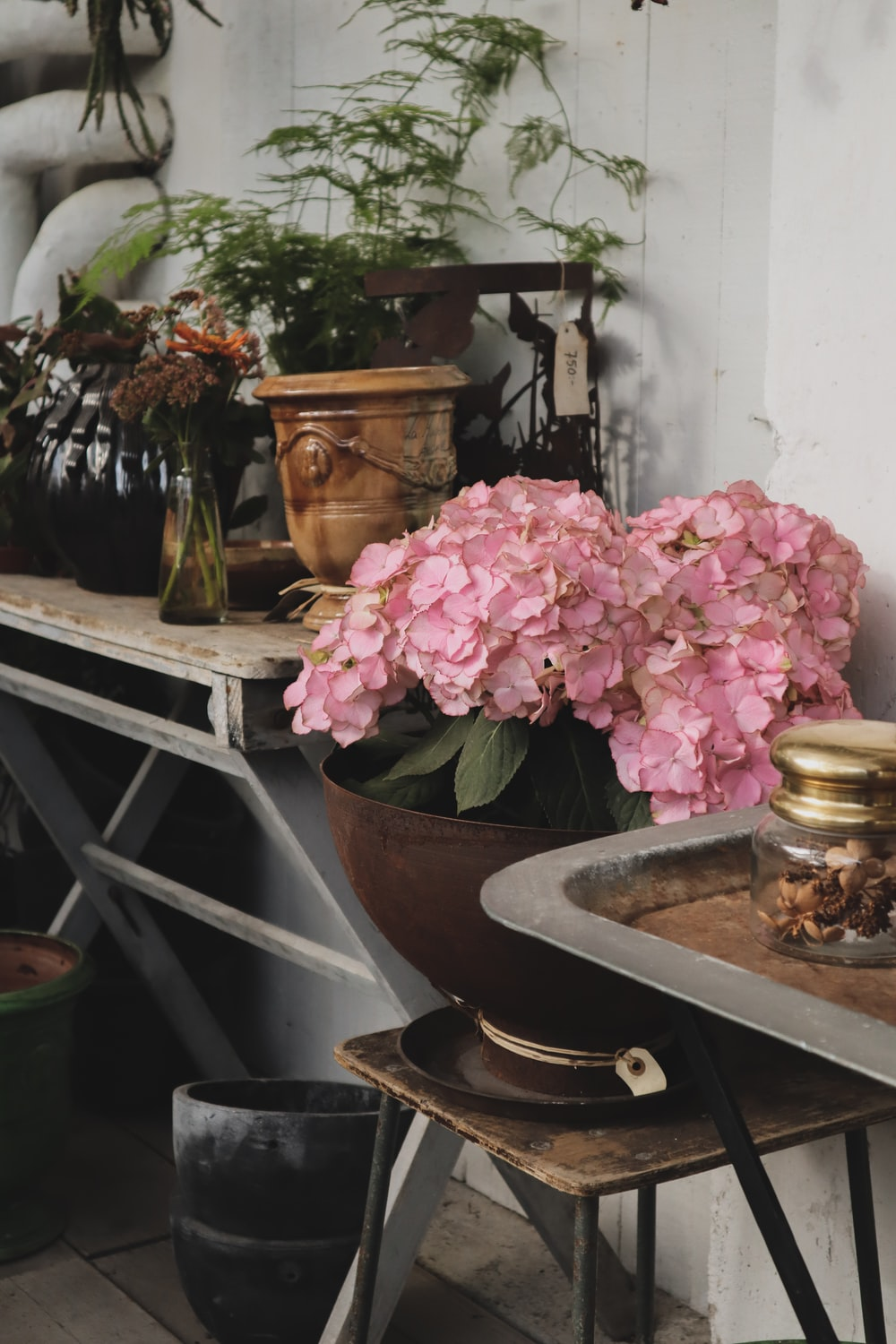 pink flowers in pot near console table