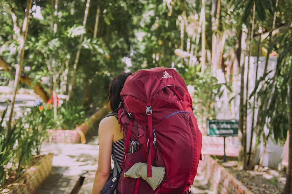 person with red trekker backpack standing on pathway surrounded with tall and green trees during daytime