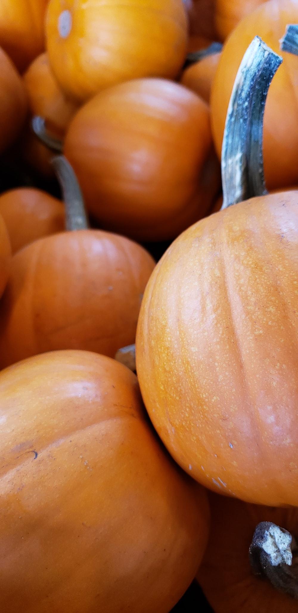 bunch of orange pumpkin
