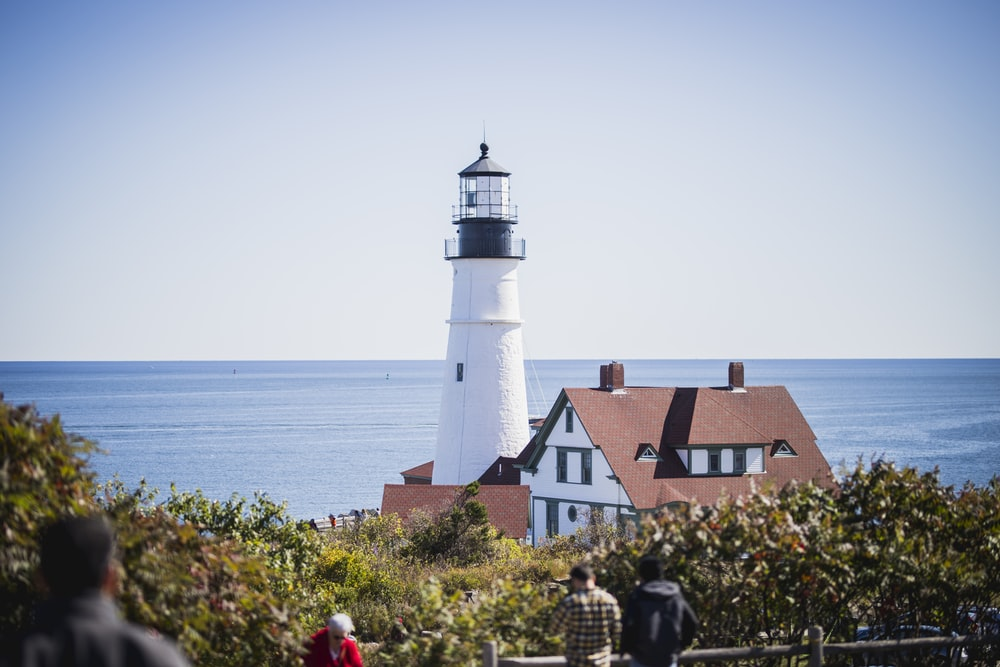 white and brown light house on seashore