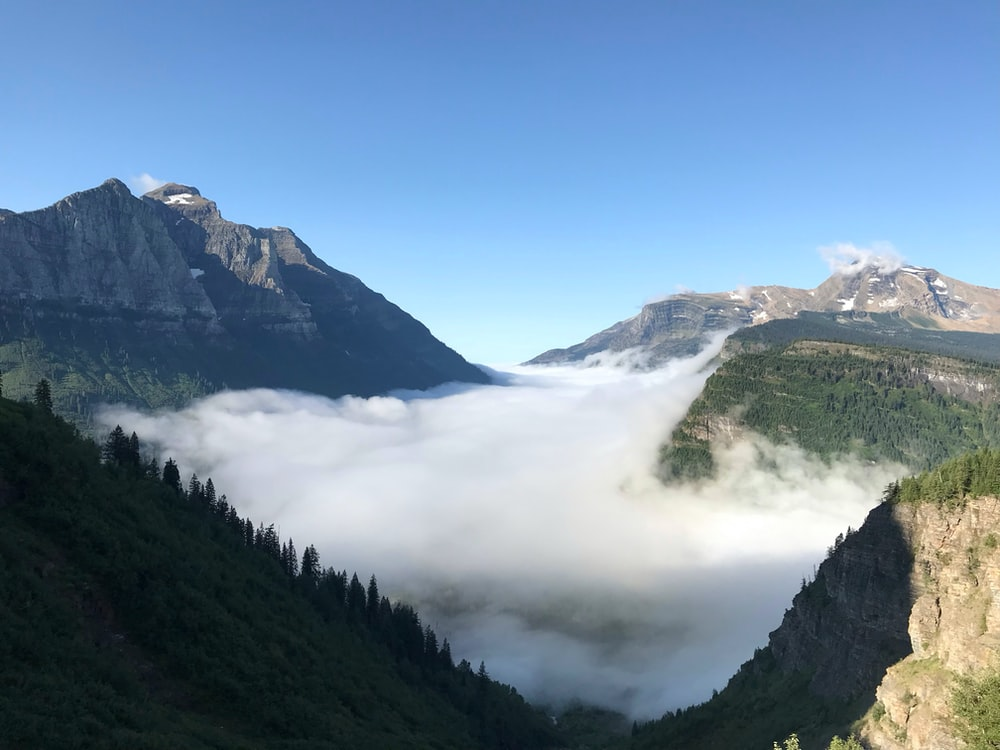 mountains coevred by fogs