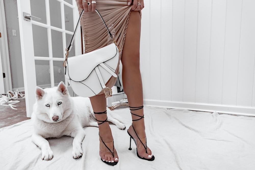 white dog beside standing woman holdingbag
