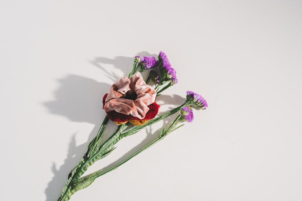 purple flowers in bloom