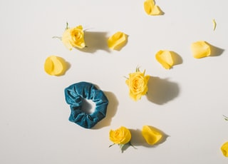 blue hair tie near yellow rose flowers