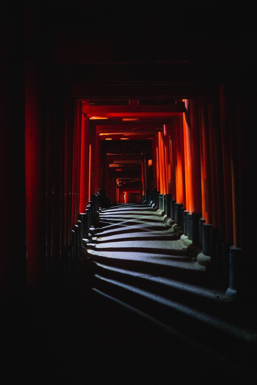 orange and black tunnel photo