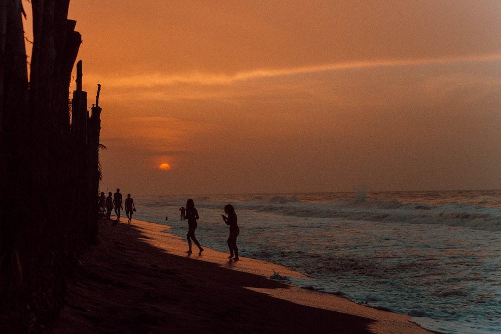people near seashore under orange sky