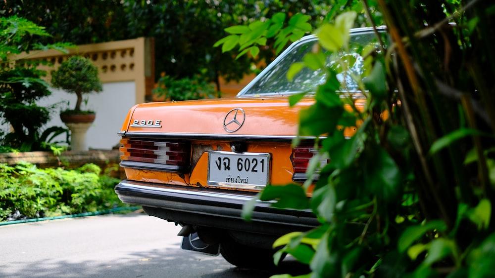 orange Mercedes-Benz car beside green plants
