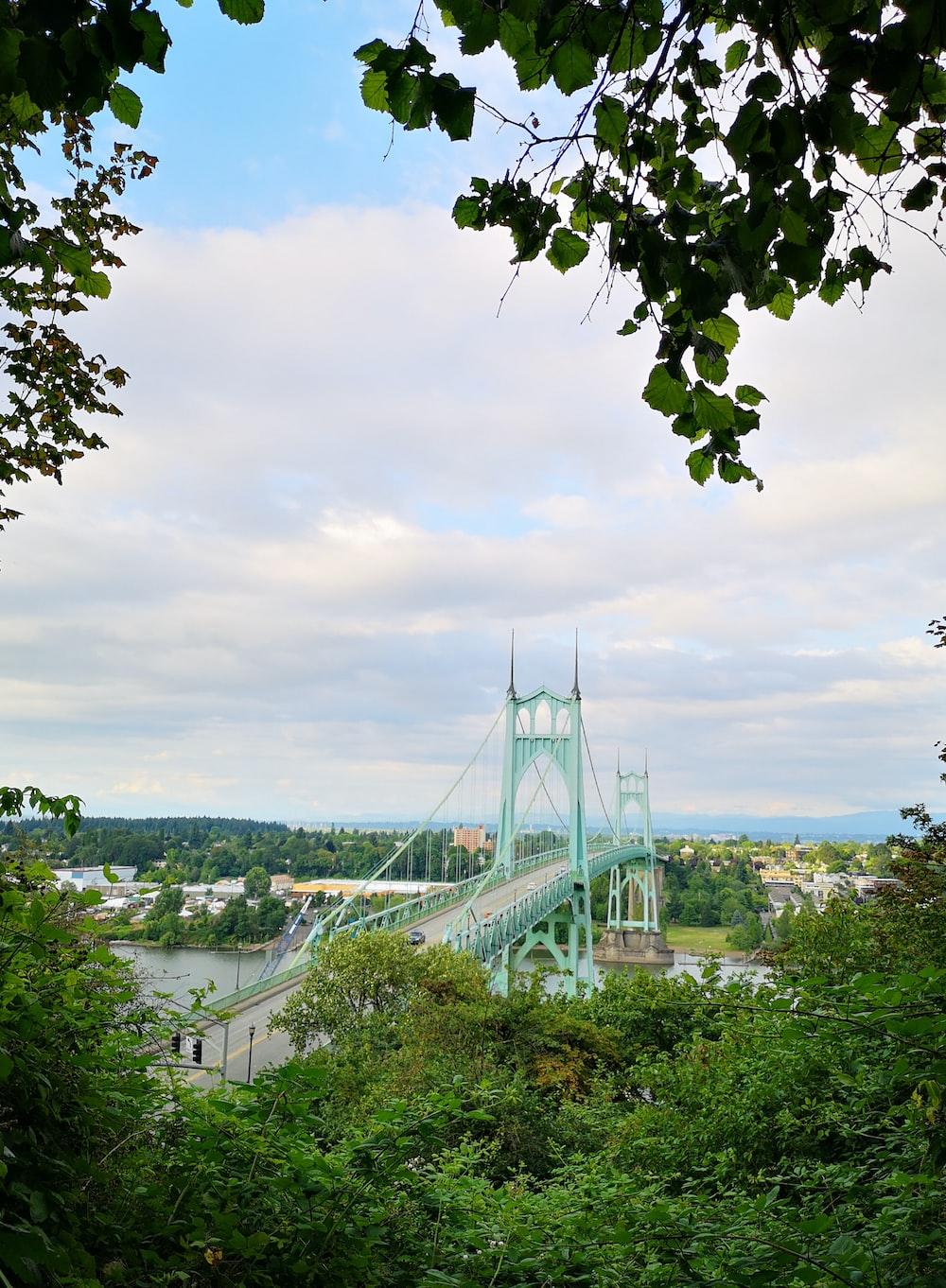 teal bridge near trees