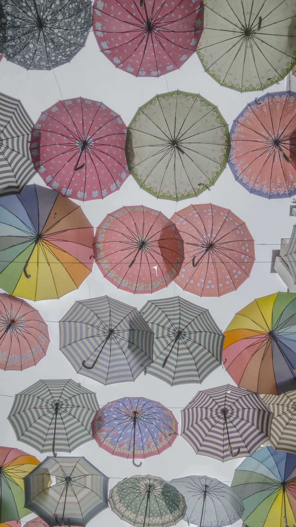 assorted-color-and-designs umbrella buntings