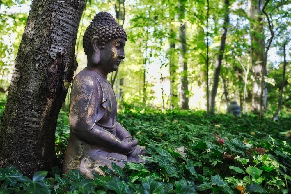 shallow focus photo of Gautama Buddha figurine