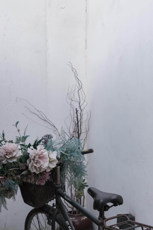 white petaled flowers on pot