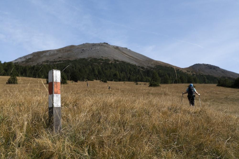 trekker on slope near forest during daytime