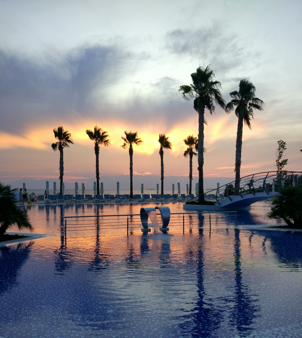 calm body of water near palm trees during golden hour
