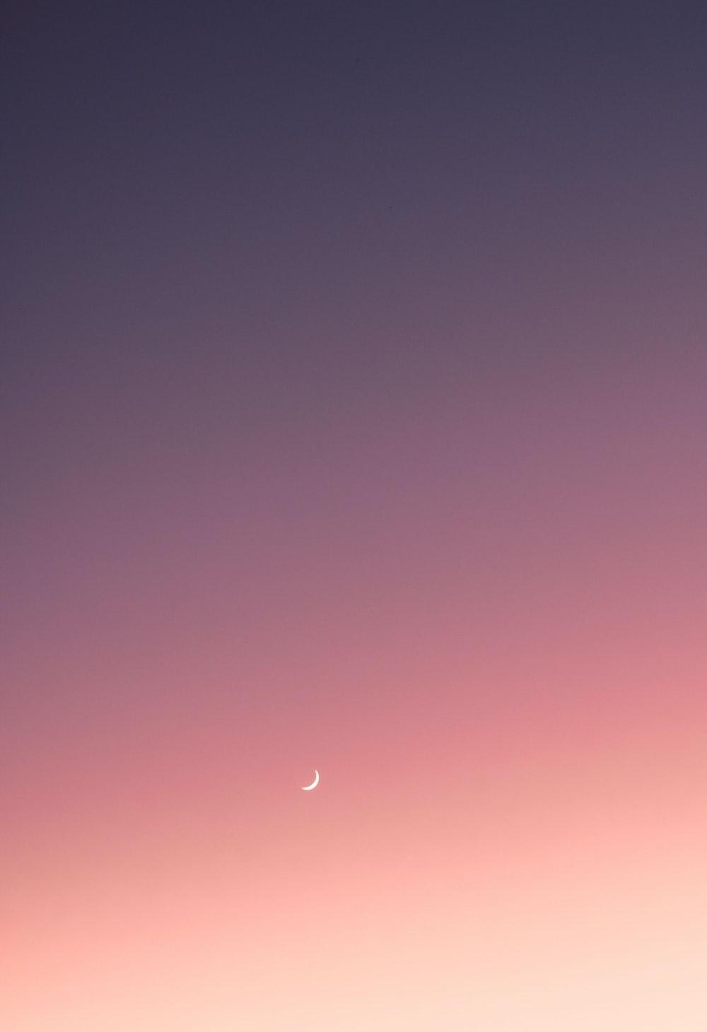 white moon scenery