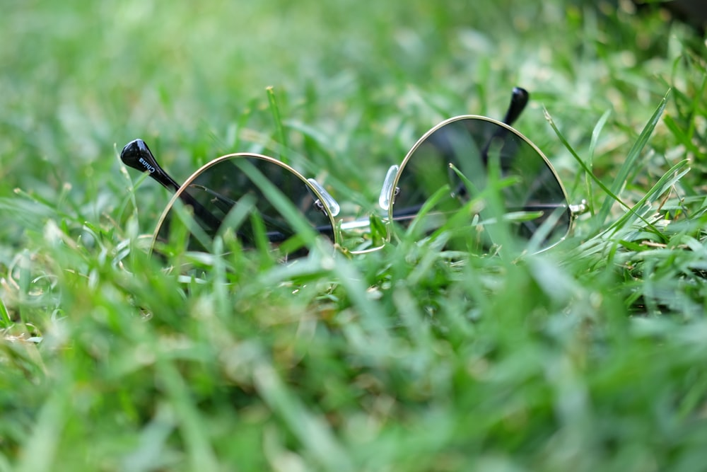 shallow focus photo of black sunglasses with silver frames on grass