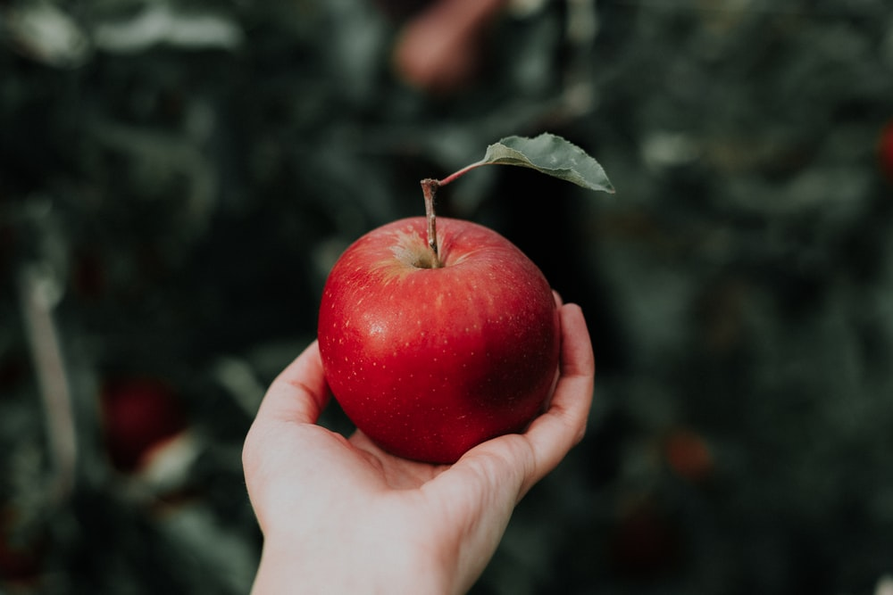 one red apple