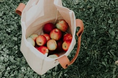 Massachusetts Farm Apologizes After Falsely Accusing Black Family of Stealing Apples