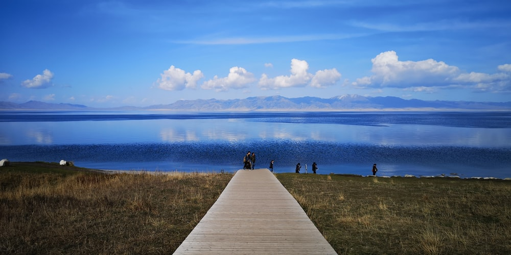people on beige wooden pathway on grass field seashore during day