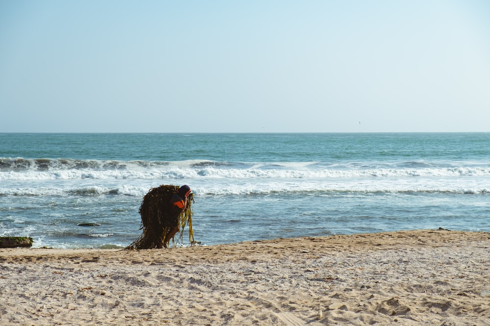person standing beside seashore during daytime