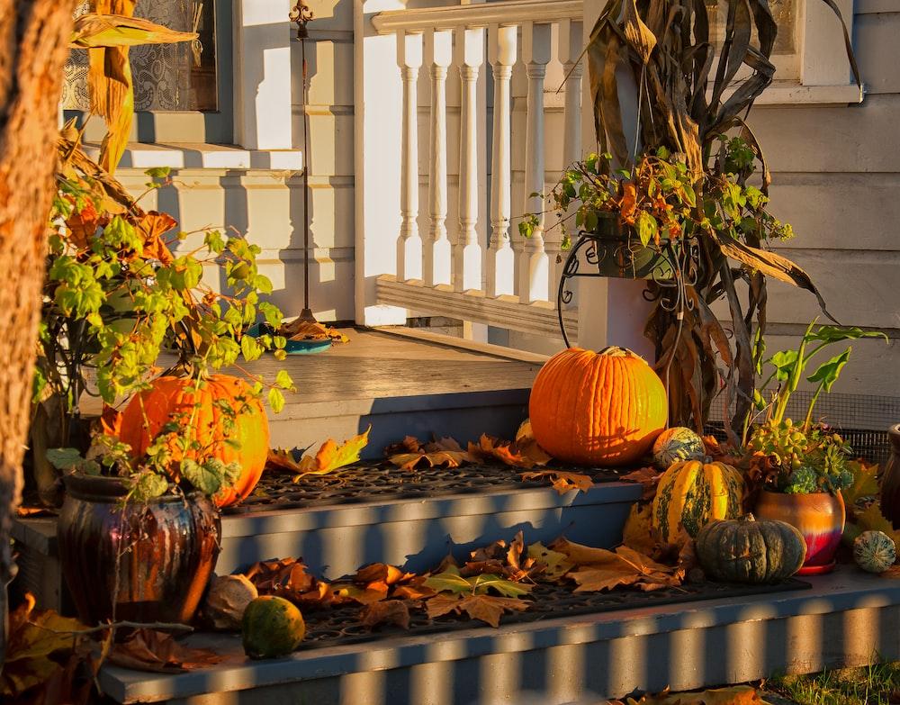 orange pumpkins on doorway