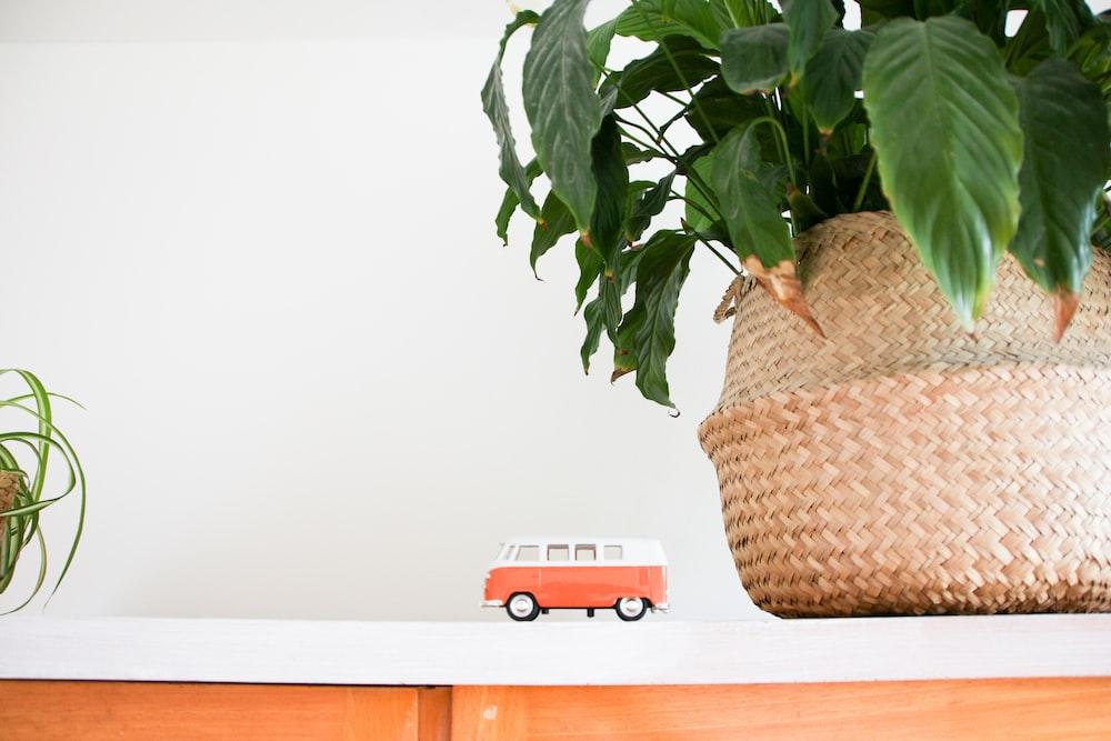 white and orange van toy near green leaf plant