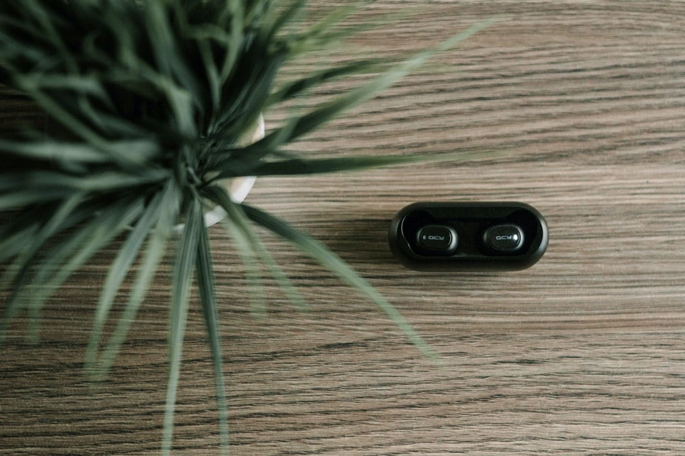 black earbuds beside white potted green plant