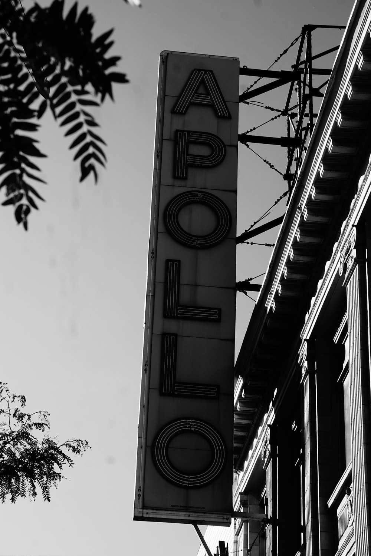 Apollo neon signage on wall