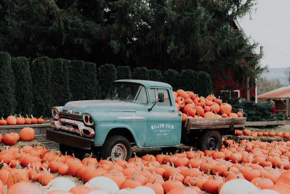 green single cab pickup truck carrying squash