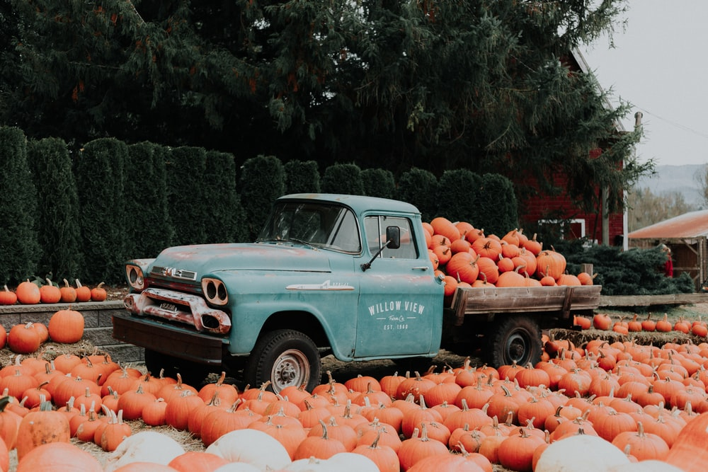 green single cab pickup truck carrying squash