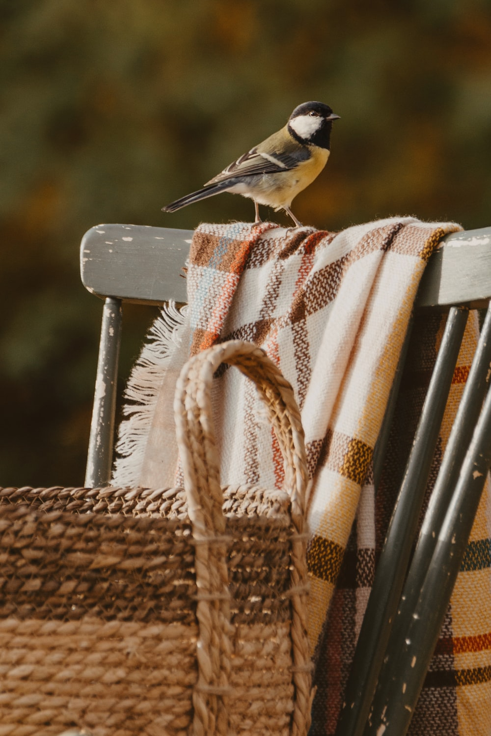 bird on cloth