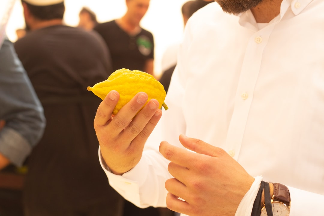 A man chooses an etrog in Sukkot, the four species