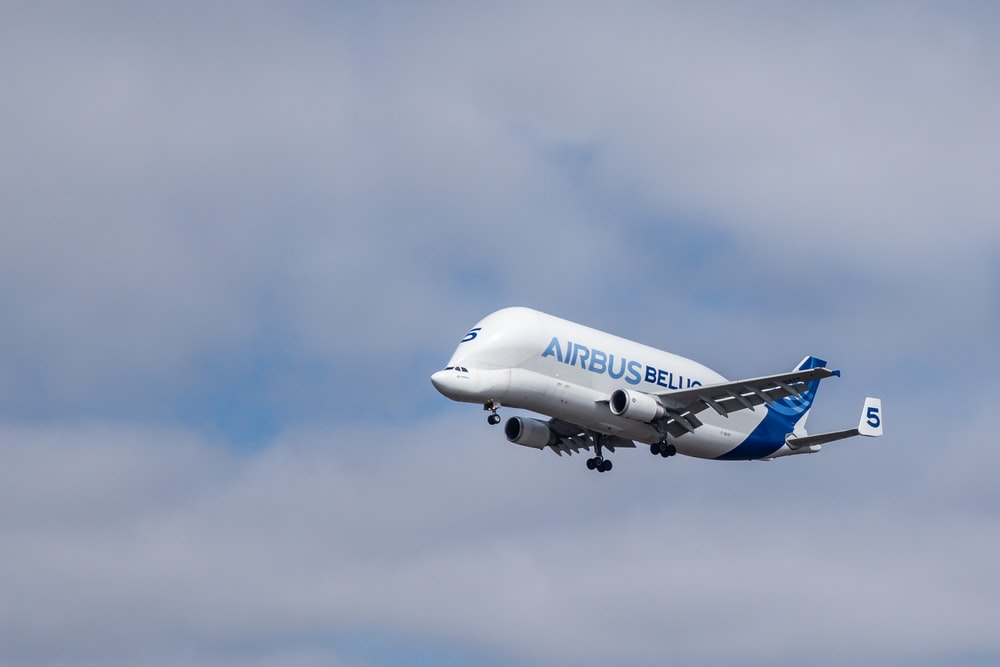 blue and white Airbus airplane