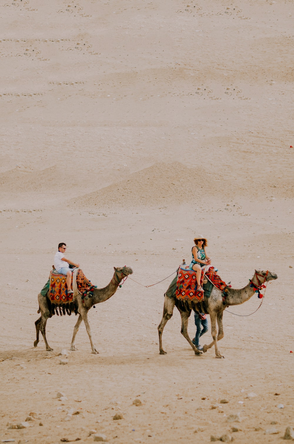man and woman riding on camels