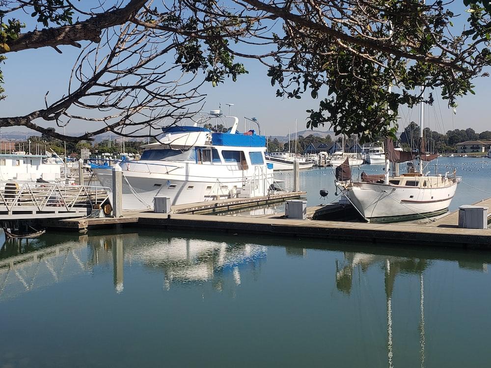 white boat beside dock