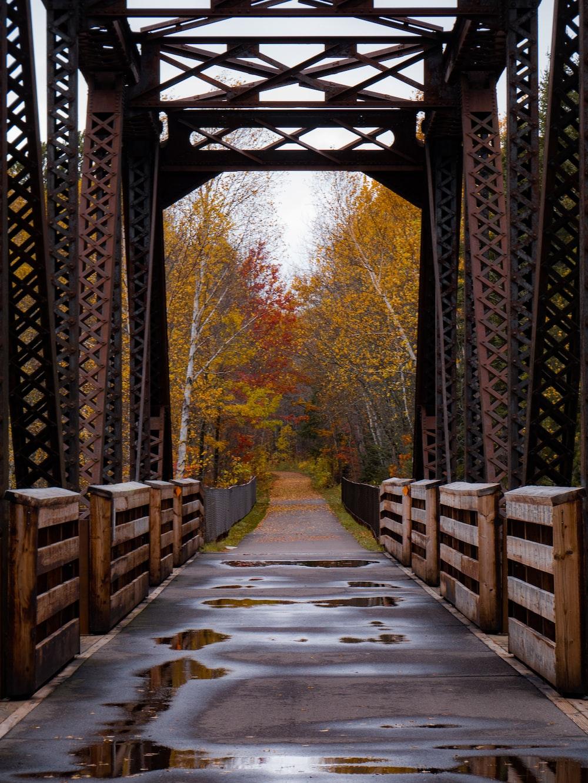 brown and black metal bridge