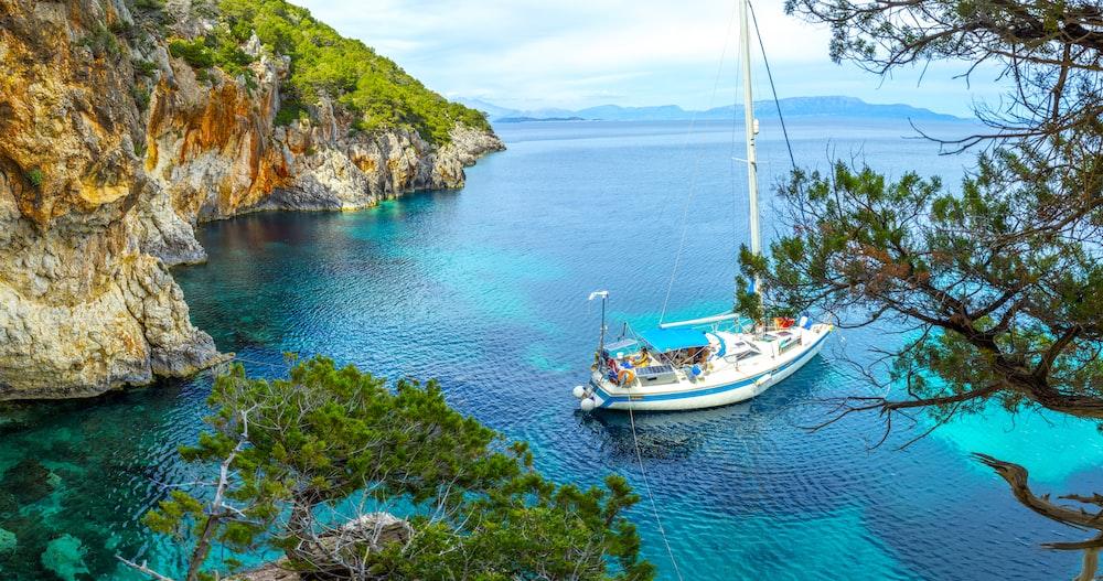 white sailboat on sea water near trees