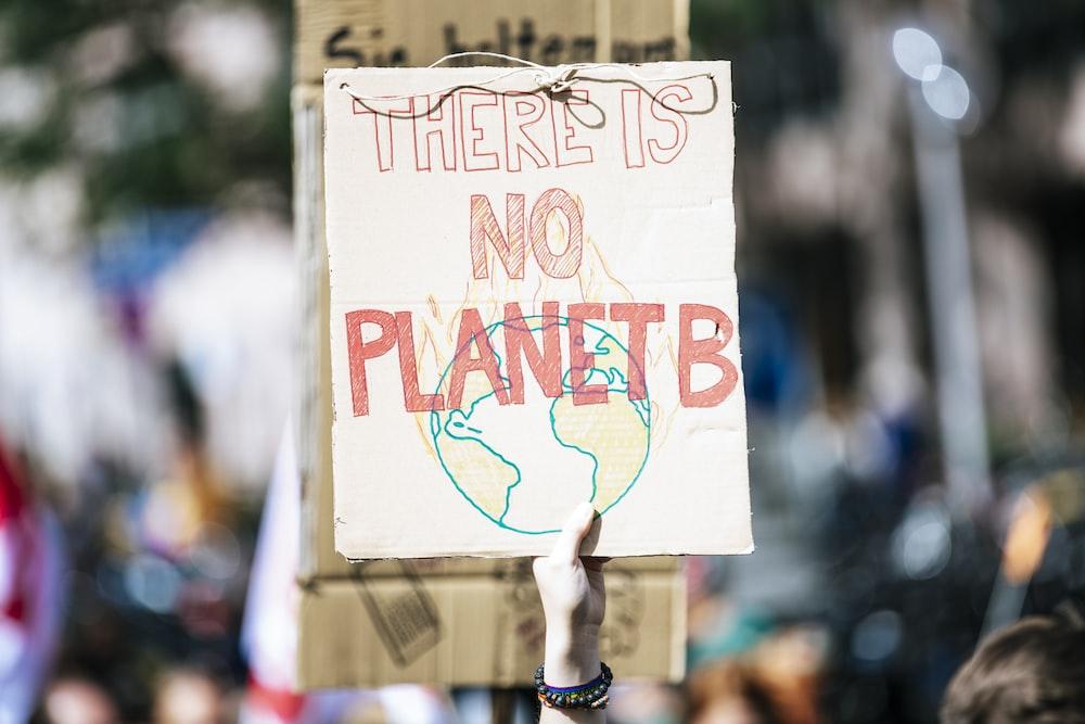 Protesta per i cambiamenti climatici in corso