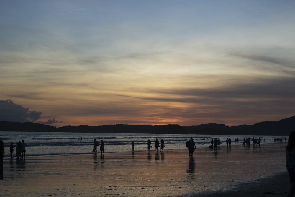 people in seashore during golden hour