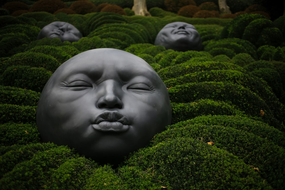 face decoration on green grass