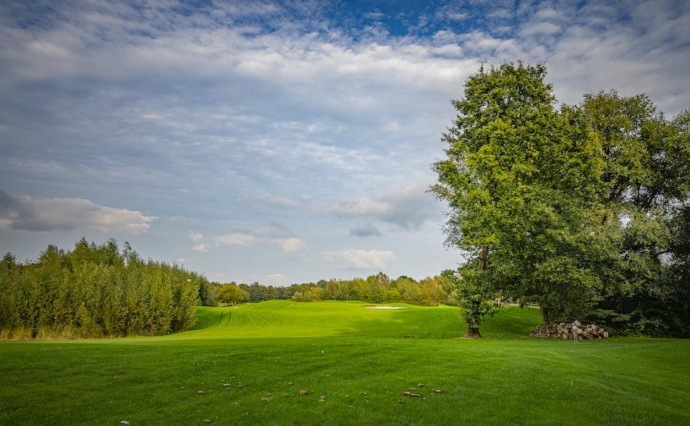 Bereit die Golfplätze Bayerns zu spielen