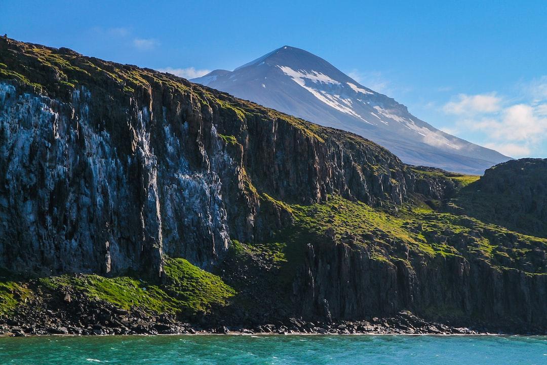 Rock and grass - Svalbard