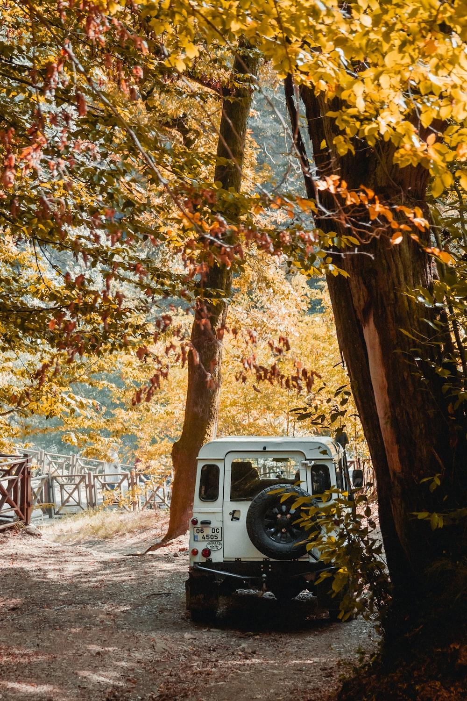 white vehicle under trees during daytime