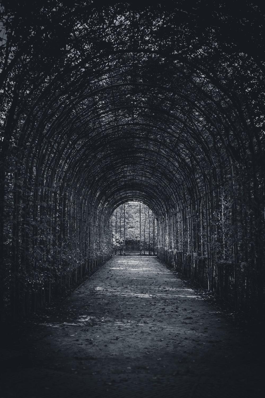 greyscale photography of ark decor