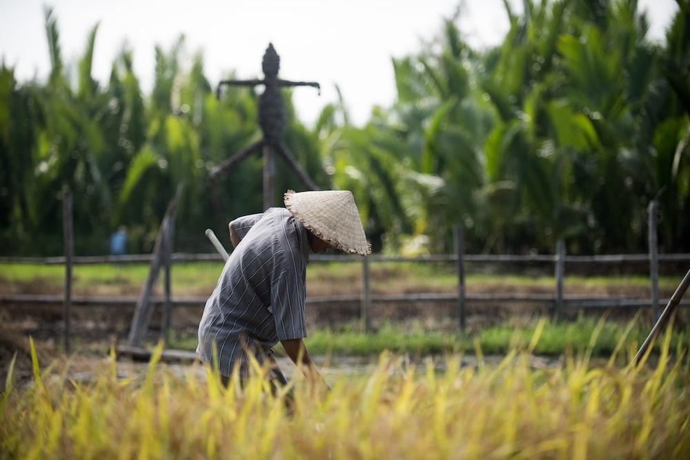 man in wicker conical hat raking on grassy field