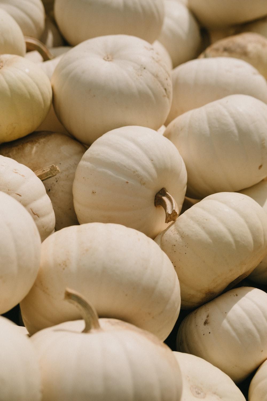 white squash lot