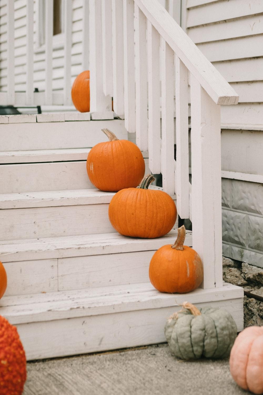 orange pumpkins on white wooden stairs