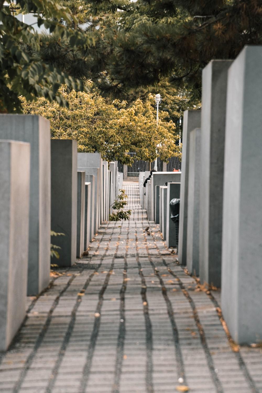 grey concrete pathway during daytime